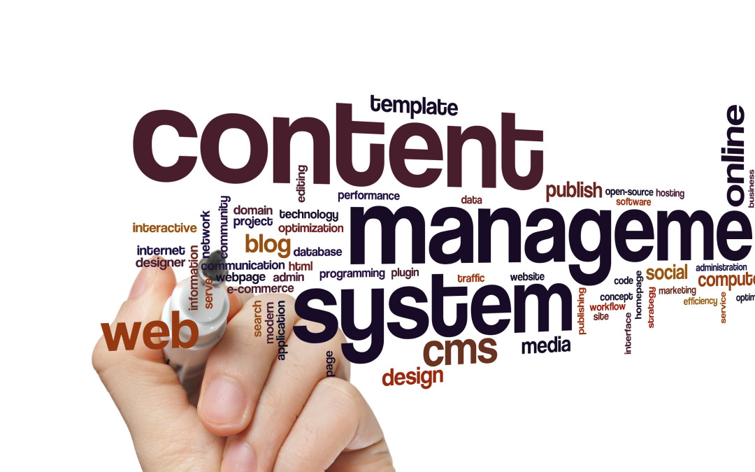 Using a custom developed Content Management System